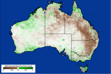 MODIS-based 8-day NDVI product for Australia from 1-9 January 2014