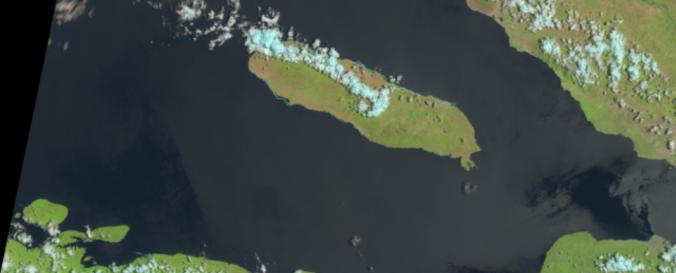 Screenshot of Landsat 8 image