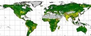 Screenshot of Global Soil Erosion (ESDAC)