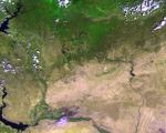 Satellites, such as ESA's Proba-V, can monitor vegetation intactness from space.