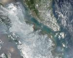 Fires in Sumatra, Indonesia in March 2014 seen from Space.