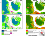 Different spatial resolution of MODIS compared to Landsat.