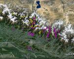 Landslides identified by the NASA-USGS-Interagency Volunteer Earthquake Response Team appearing in yellow and by the British Geological Survey-Durham University-Earthquakes Without Frontiers team in pink (Image: Google/ICIMOD)