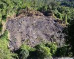 """Land cleared for """"jhoom"""", a traditional shifting cultivation in Northeast India (Image: Prashanthns)"""