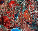 Image captured by Sentinel-2A satellite on the vegetation of Northwest Sardinia, Italy (Source: ESA)