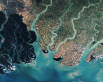 Satellite image over the eastern part of the Sundarbans in Bangladesh. Image: European Space Agency.