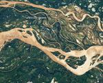 Image of Parana River Flood Plane