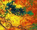Vegitation Map of Mekong Delta