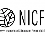 Official Logo of NICFI. Image: NICFI.