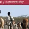 FAO Report. Image: FAO