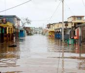 Les Cayes, southern Haiti, 5 October 2016 after Hurricane Matthew has struck the area. Image: Jethro J. Sérémé / American Red Cross / IFRC.