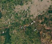 Image of the tailings dam flood on 30 January acquired by Operational Land Imager (OLI) on Landsat 8. Image: NASA.