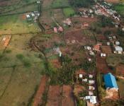 Rice paddies in Rwanda. Image: A'Melody Lee / World Bank.