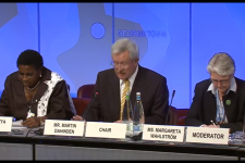 Plenary Summary: Global Platform and Discussions on Post-2015 Framework