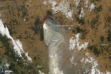 The bushfire in Grampians National Park burned 43,000 hectares (106,000 acres)