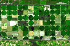 Satellite picture crop seeds