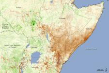 Vegetation map of Eastern Africa during the severe drought of 2011