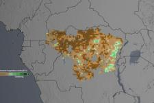 "The studies analyzed the ""greenness"" of the Congo rainforest"