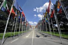 Member States delegations convened in Geneva