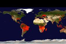 Global distribution of fire occurrences over a 10-day period by the beginning of the week