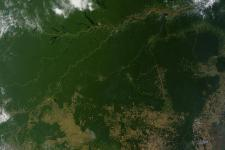 Satellite image of the Amazon
