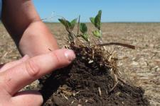 Spaced based data about the consistency of soil can help farmers make better decisions (Image: USDA-NRCS)