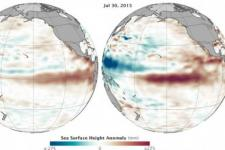Comparison between sea level increase in 1997 and 2015 at the Eastern Pacific (Source: NASA)