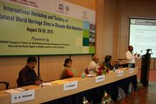 "Shirish Ravan of UN-SPIDER speaking on ""Role of earth observation in maitaining health of natural heritage sites"""
