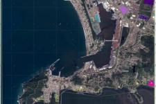 Puerto De Manzanillo: Grading Map (Source: Copernicus Emergency Manage Service)
