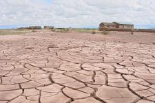 Drought in Bolivia turned pampa  into cracking ground