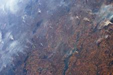 Fires in the Amazon as seen from Space. Image: ESA/NASA–L. Parmitano.