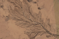 Gully erosion in northern Somalia. Image: Google Earth.
