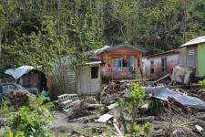 Damage from Hurricane Maria, which struck the island country of Dominica in 2017. Image: Tanya Holden/UK Department for International Development (DFID).