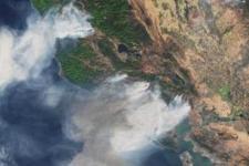 Forest fires. Image: ESA
