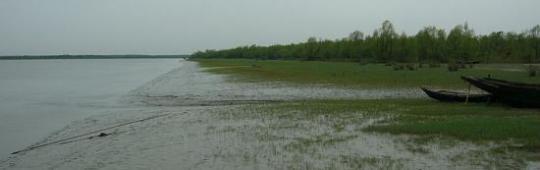 Snow-fed rivers and heavy rains are major causes of flooding in Bangladesh (Image: Shahnoor Habib Munmun)