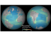 Global monthly primary productivity. Image: ESA
