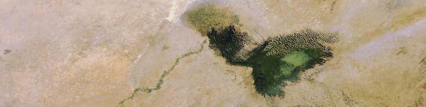 Lake Chad has shrunk dramatically over the last four decades due to a decrease in rainfall and an increase in the amount of water used for irrigation projects. Its surface area was 25 000 sq km in the early 1960s, compared with 1350 sq km in 2001. Image acquired 19 December 2007 by the MERIS (Medium Resolution Imaging Spectrometer) instrument aboard ESA's Envisat satellite. Image: ESA, CC BY-SA 3.0 IGO.